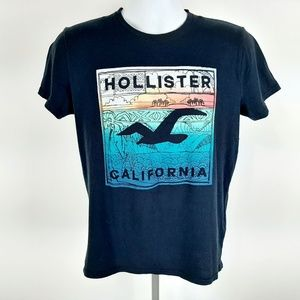 Hollister Young Men's T-shirt Size Small Blue YB9
